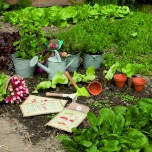 Les Jardin - Moulin Roty - Memoire d'enfant